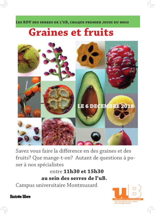 affiche JPO serres 2018 12 Graines fruits